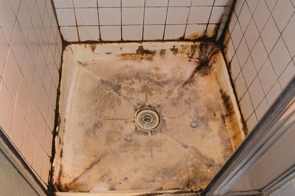 Annandale Bathroom - 11