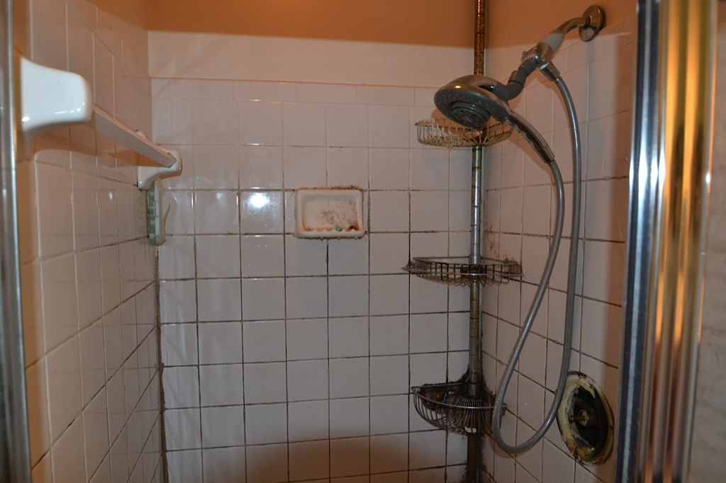 Annandale Bathroom - 9